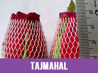 Best Fresh Tajmahal Flower Suppliers in India