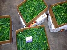 Best Fresh Okra Vegetables Suppliers in India